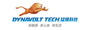 广东猛狮新能源科技股份有限公司