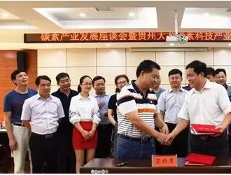 总投资17亿元碳素产业园项目落户贵州大龙