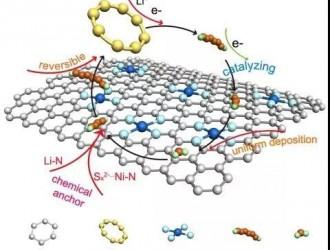 氮掺杂石墨烯负载镍单原子助力锂硫电池反应动力学