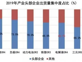 """中国锂电材料市场""""分野""""与全球化""""征途"""""""